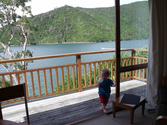 Whatamonga Homestay: Our 18m old son loved it as much as we did :)