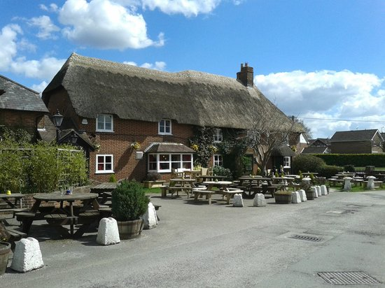 Elm Tree Inn: The Old Elm Tree