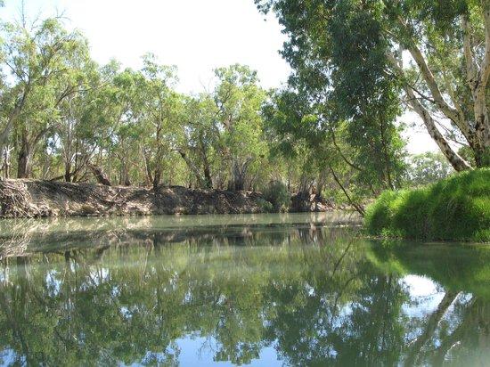 Balranald, Australia: Murrumbidgee