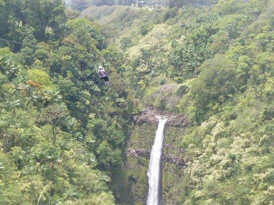 Skyline Eco Adventures - Akaka Falls: On #7!