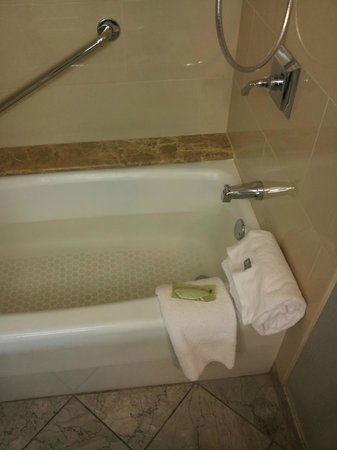 The Westin Crown Center: tub
