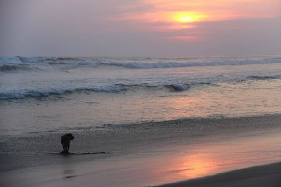 Pranamar Villas and Yoga Retreat: sunset Pranamar