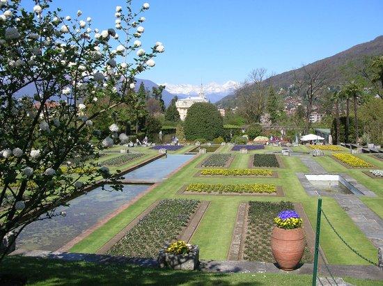 Giardino a terrazze foto di villa taranto verbania - Giardino a terrazze ...