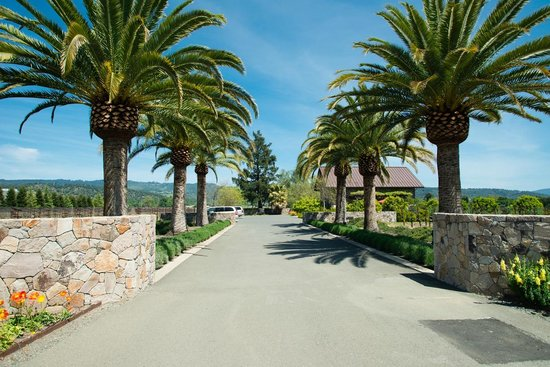 Heitz Cellars: Beautiful grounds on this front driveway