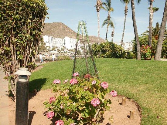 Club Puerto Anfi : THE ISLAND