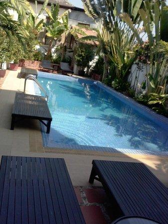 Encore Angkor Hotel : the pool