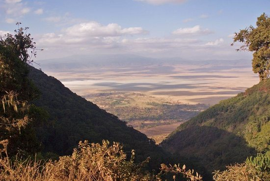 Foto de Gallery Tours and Safaris - Private Day Tours