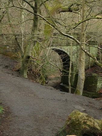 Wyke, UK: The Bridge at Norwood Green end of Judy Woods