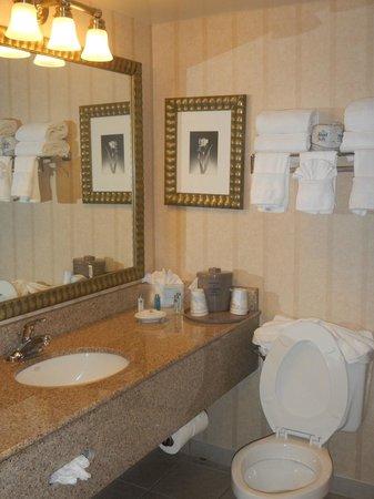 Hampton Inn Orlando International Airport: nice bathroom