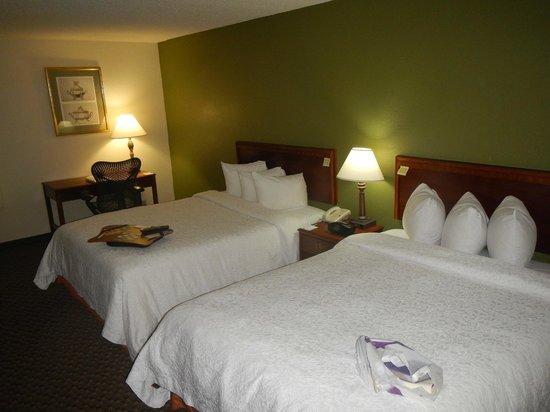 Hampton Inn Orlando International Airport: double beds...nice pillows