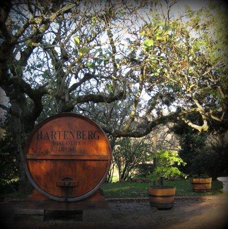 Olyvenbosch Farm