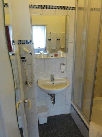 Academy Hotel: baño