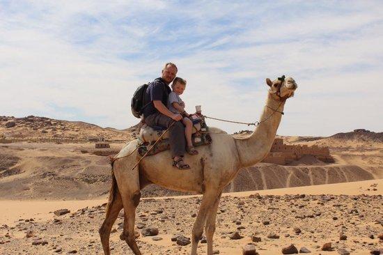 Emo Tours Egypt - Aswan