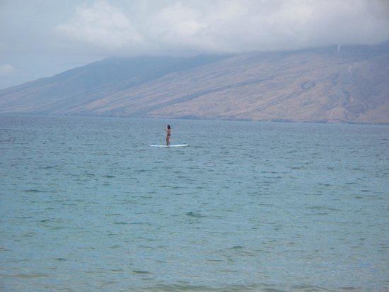 Four Seasons: Paddle boarding