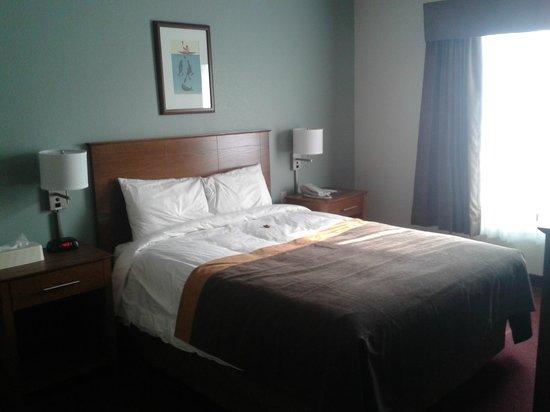 Super 8 Yellowknife: queen bed room