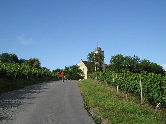 Schloss Hallburg: The castle restaurant not far from Volkach am Main