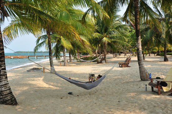 Hamanasi Adventure and Dive Resort: Hammocks on the beach