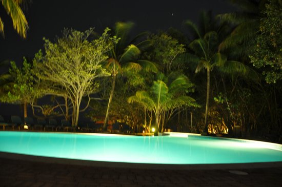 Hamanasi Adventure and Dive Resort: Infinity pool at night