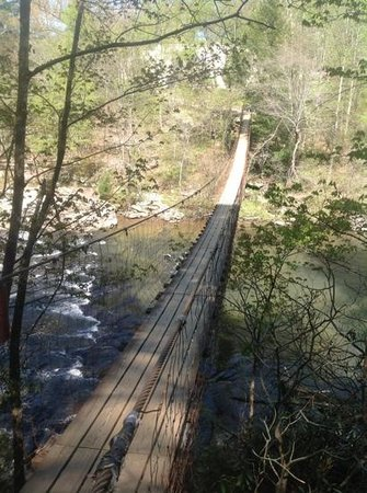 The Inn at Fall Creek Falls State Park: Swing bridge.