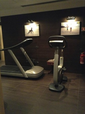 Hotel Manzoni : one area of the fitness center