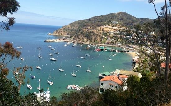 Catalina Island Visitors Bureau: another scenic view