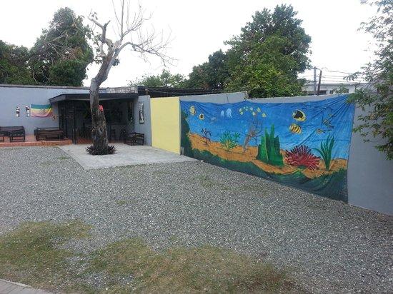 Reggae Hostel : cour arrière / bar
