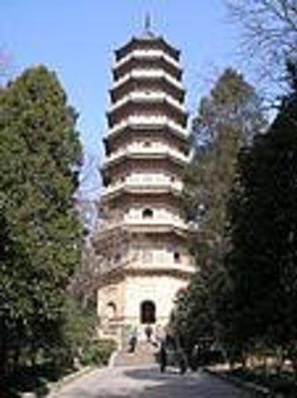 Fuxue Confucian Temple Ruins