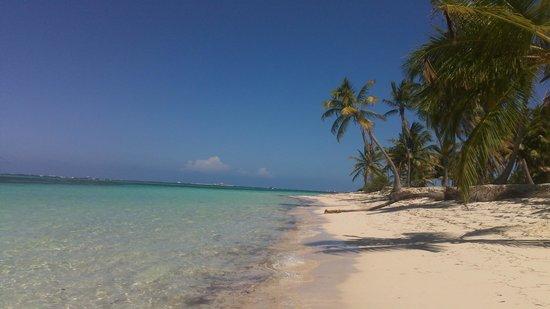 Natura Park Beach - EcoResort & Spa: Beautiful beach to the left of hotel