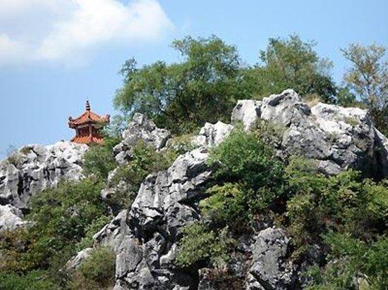 Jingdezhen Forest Park Photo