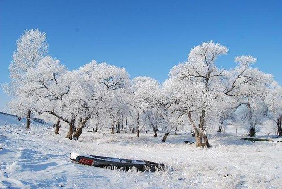 Dailing Ski Field