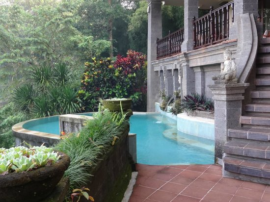 Villa Awang Awang : View of the infinity pool from the pool deck, can see the dining room terrace above.