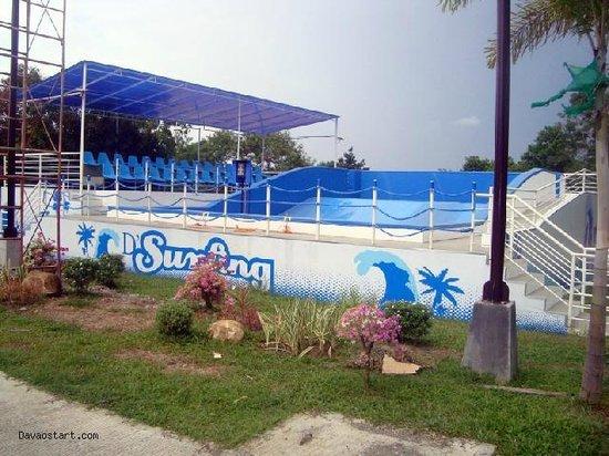 D'Leonor Inland Resort and Wavepool: surfing