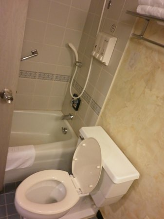 Toyoko Inn Narita Airport: Bathroom