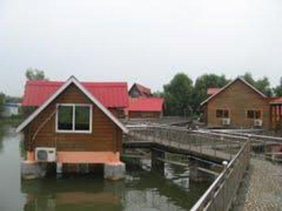 Fangcheng County 사진