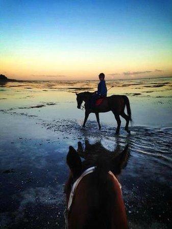 Centre Equestre De Riambel: Sunset riding: no photo retouching!!!!