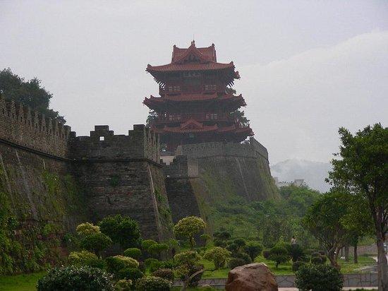 Tonghai County Resmi