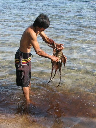 Fare Vaihere: Grounds-keeper shows us how to catch an Octopus