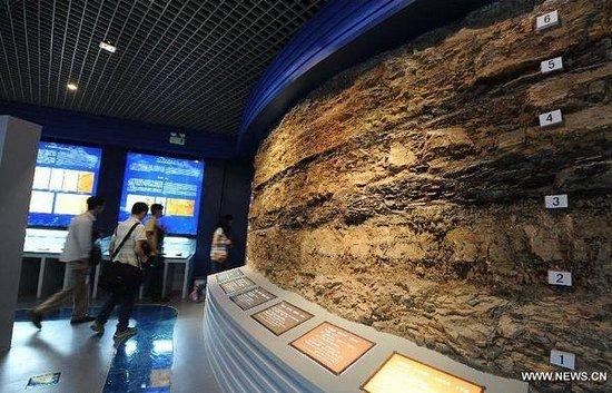 澄江动物化石群