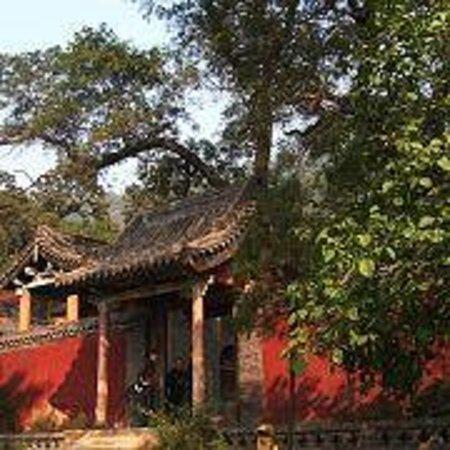 Taishan Temple