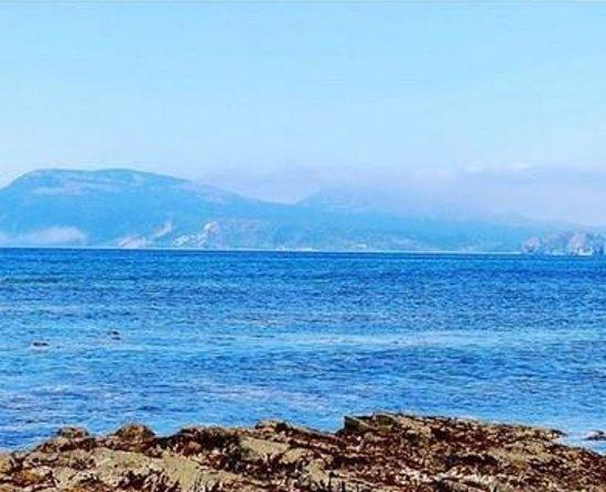 Foto de Hongze Lake Wetland