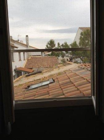 Les Palmiers : vue de notre chambre je suis pas la pour resté dans ma chambre
