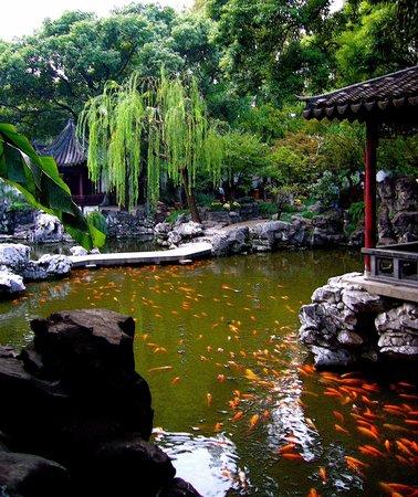 Yi Garden