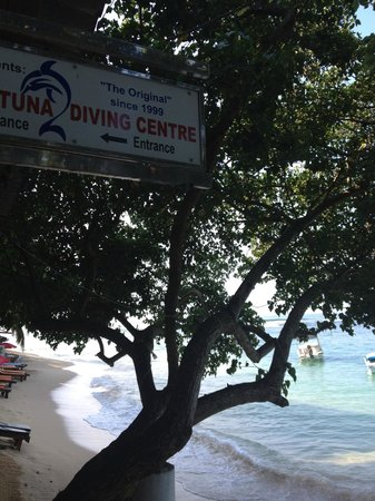 Unawatuna Diving Centre : diving centre