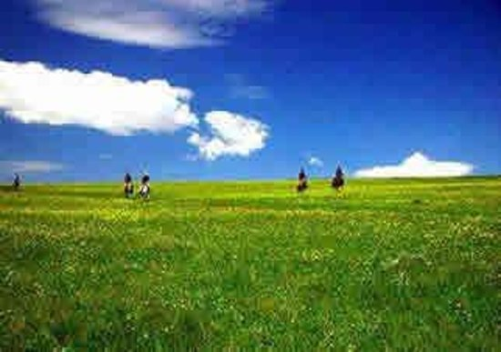 Prairie In the Air Foto