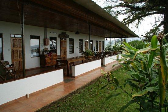 Ceiba Tree Lodge: Terasse