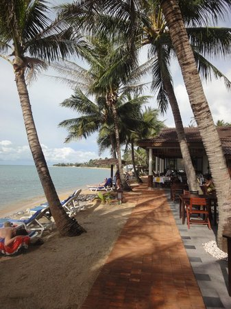 Paradise Beach Resort: Strandlage