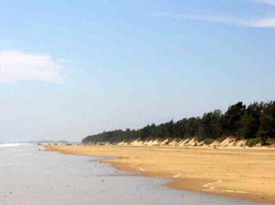 Shankarpur Beach Digha Top Tips Before You Go Tripadvisor