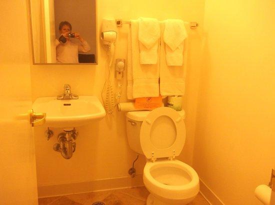 SW Hotel: Salle de bains