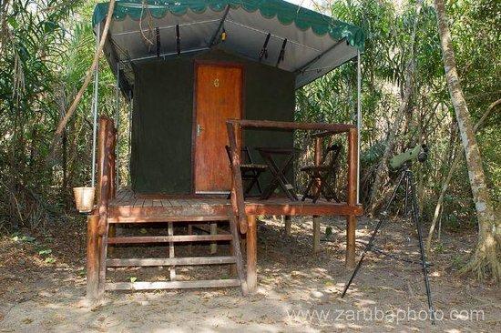 Pantanal Jaguar Camp