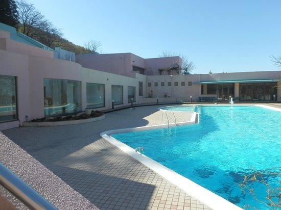Kanazawa Kokusai Hotel : プールです